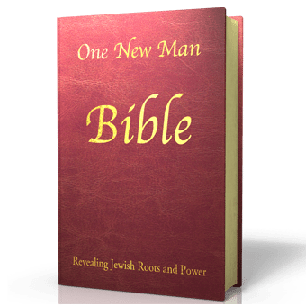 One New Man Bible Synthetic Leather